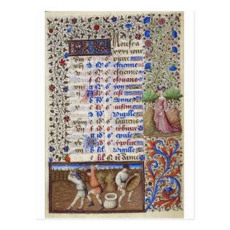 Mittelalterlicher Kalender: August Postkarte