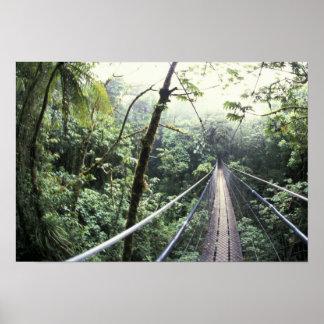 Mittelamerika, Costa Rica, Monteverde Wolke Poster