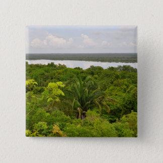 Mittelamerika-Regen-Wald in Belize Quadratischer Button 5,1 Cm