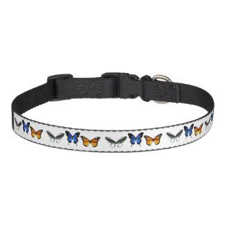 Mittleres Schmetterlings-Muster-Hundehalsband Haustierhalsband