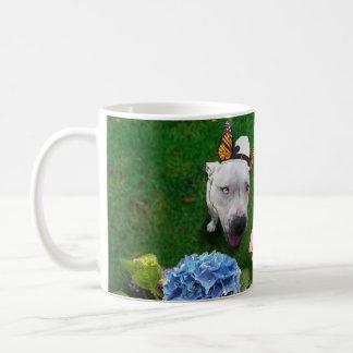 Mitzy das Mariposa (Hund mit Kaffeetasse