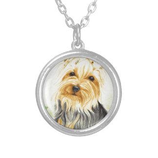 Mitzy ein MiniaturYorshire Terrier Versilberte Kette