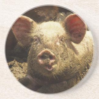 MO: Suite Genevieve, Schweinezuchtbetrieb Untersetzer