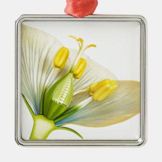 Modell der Blume mit den Staubgefässen und den Silbernes Ornament