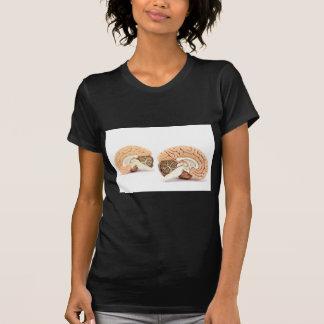 Modell der menschlichen Gehirne abgeschieden auf T-Shirt