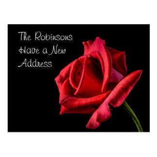 Moderne Rosen-neue Adresse Postkarten