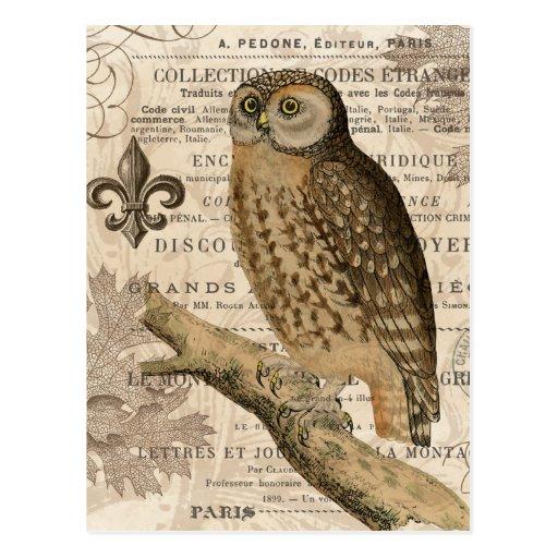 moderne Vintage französische Eule Postkarten