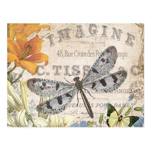 moderne Vintage französische Libelle Postkarten