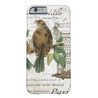 Moderne Vintage französische Vögel und Birdcage Barely There iPhone 6 Hülle