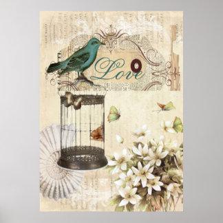 moderner Vintager französischer Vogel botanischen Poster