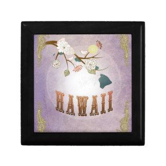 Moderner Vintager Hawaii-Staats-Karten-Bonbon-Lave Modeschmuckschachteln