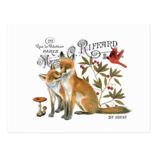 moderner Vintager Waldfuchs Postkarten