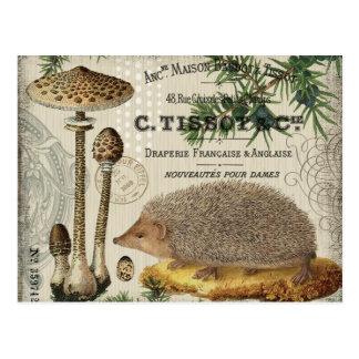 moderner Vintager WaldIgel Postkarten