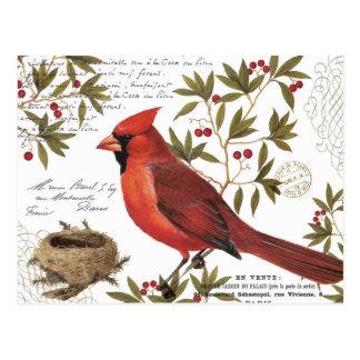 moderner Vintager Winter-Kardinal Postkarte