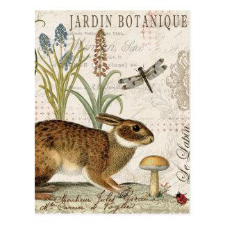 modernes Vintages französisches Kaninchen im Postkarten