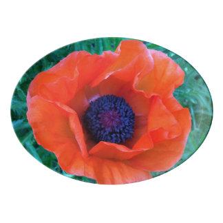 MOHNBLUME orientalische rote Orange --- Porzellan Servierplatte