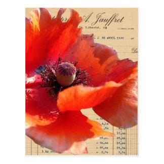 Mohnblume und Eintagsfliege-Digital-Kunst Postkarte