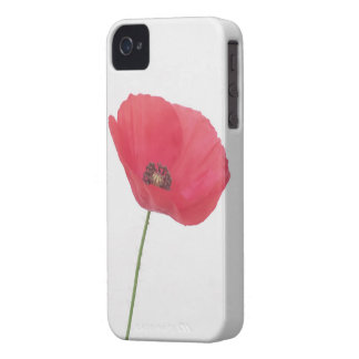 Mohnblumen-Blume Case-Mate iPhone 4 Hülle