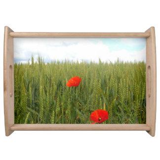 Mohnblumen in einem Weizen-Feld-Serviertablett Serviertablett