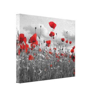 Mohnblumen Schwarzes, Weiß und Rot Galerie Falt Leinwand