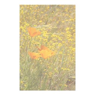 Mohnblumen u. Gänseblümchen-Wildblumen-Briefpapier Briefpapier