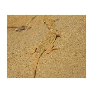 Mojave Franse-Toed Eidechsen-Wüsten-Fotografie Leinwanddruck