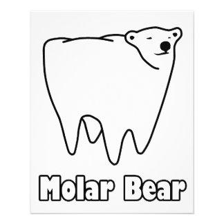 Molarer Bärn-polarer Zahn-Bär 11,4 X 14,2 Cm Flyer