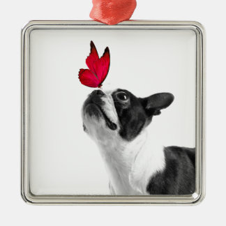 Mollie Mäusekind Boston Terrier Quadratisches Silberfarbenes Ornament