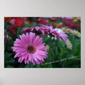 Moment-Rosa Gerber Gänseblümchen-fantasiereichen B Poster