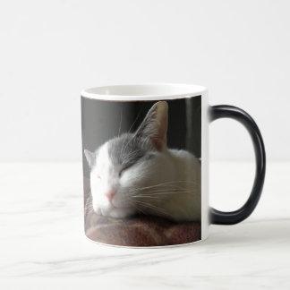Momo Katze Coffe Tassen-kundengerechte Schablone