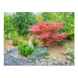 Momotaro japanischer Garten 3 Postkarte