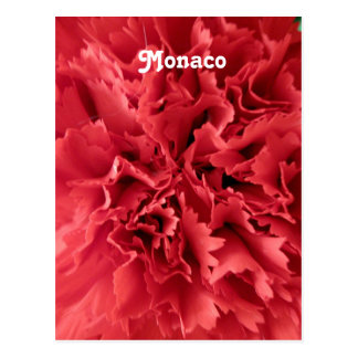 Monaco-Gartennelken Postkarte