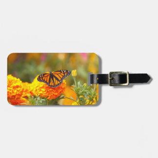 Monarch auf einer Ringelblume Gepäckanhänger