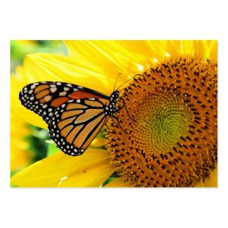 Monarch auf einer Sonnenblume, Visitenkarte