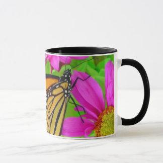 Monarch auf Gänseblümchen-Tasse Tasse