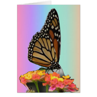 Monarch auf Lantana Karte