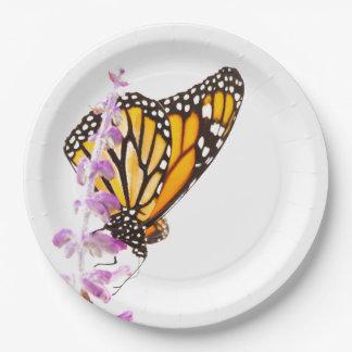 Monarch gehockt auf Lavendel Pappteller