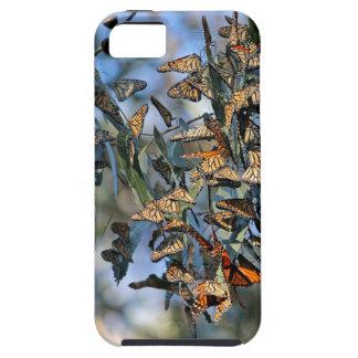 Monarch-Gruppe iPhone 5 Etui