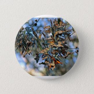 Monarch-Gruppe Runder Button 5,7 Cm