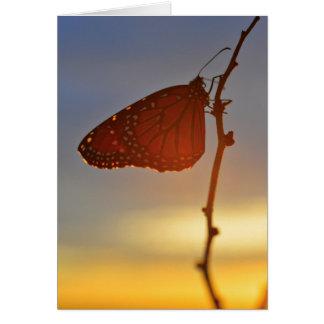 Monarch-morgens Licht Karte