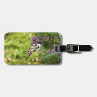 Monarch-Schmetterling auf lila Schmetterling Bush Gepäckanhänger