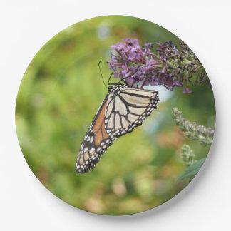 Monarch-Schmetterling auf lila Schmetterling Bush Pappteller