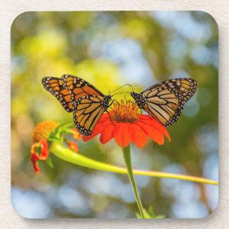 Monarch-Schmetterlinge auf Wildblumen Getränkeuntersetzer