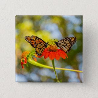 Monarch-Schmetterlinge auf Wildblumen Quadratischer Button 5,1 Cm