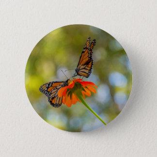 Monarch-Schmetterlinge auf Wildblumen Runder Button 5,1 Cm