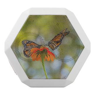Monarch-Schmetterlinge auf Wildblumen Weiße Bluetooth Lautsprecher