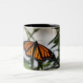 Monarch-Tasse Zweifarbige Tasse