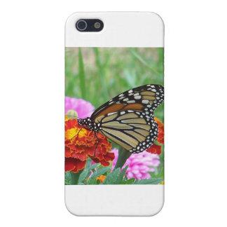 Monarch und die Ringelblumen iPhone 5 Etui