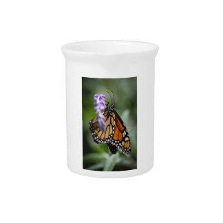 MonarchDanaus Plexippus Getränke Pitcher
