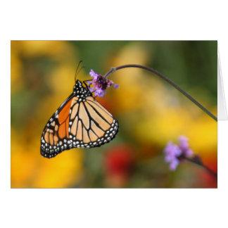 Monarchfalter-Halt für Blütenstaub Karte